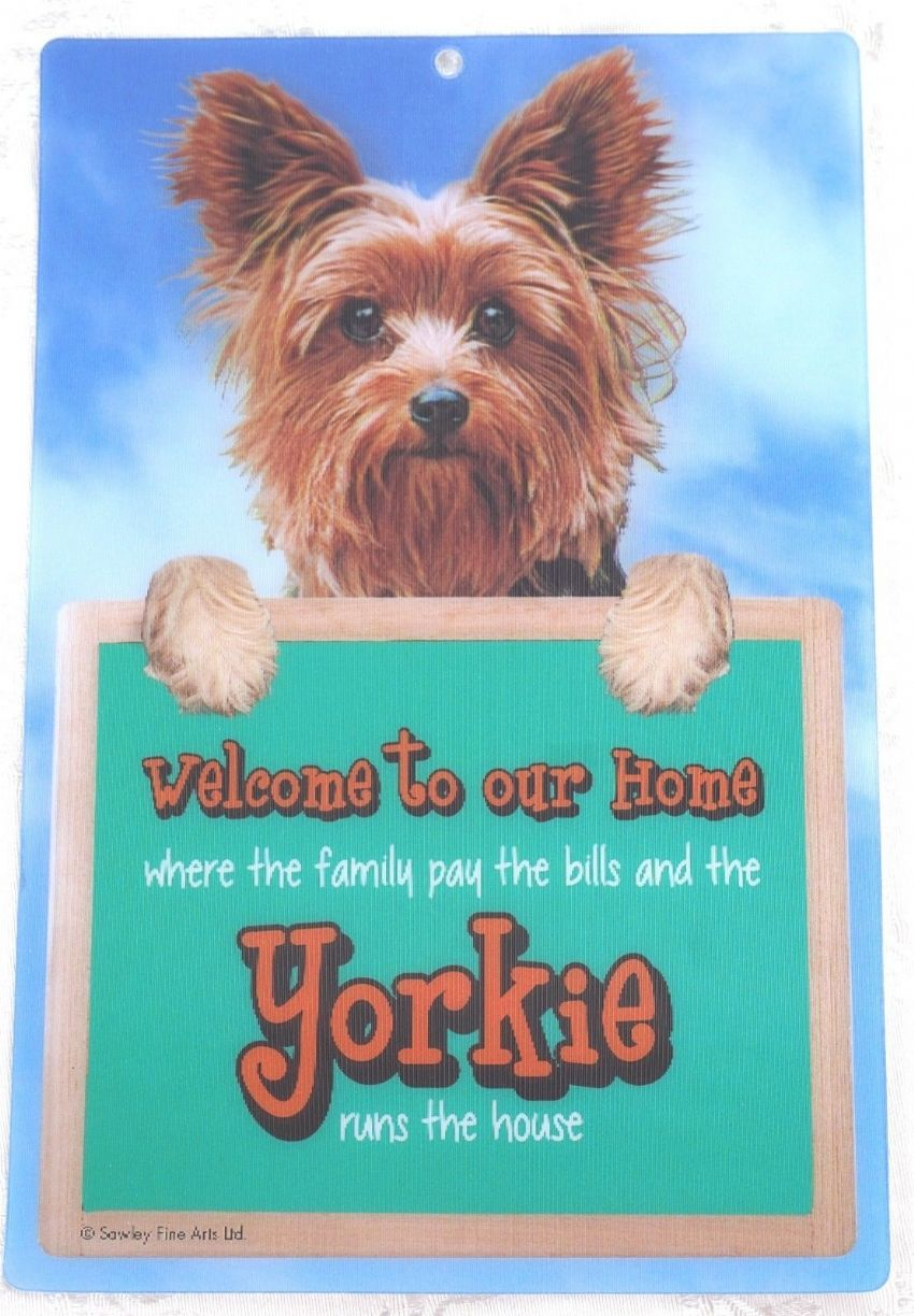 YORKIE TERRIER 3D WELCOME SIGN STUNNING EYE CATCHING 23CM X 15CM SIGN FS642